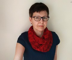 Palessie Cowl by Diana Rozenshteyn (LucciolaS) Tags: texture scarf neck knitting lace merino accessories knitted fingering cowl wollmeise