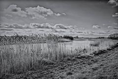 River Witham at Fiskerton (kenemm99) Tags: winter bw canon river landscape places lincoln duotone sep fen kenmcgrath 5dmk3