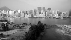DSC_0026psaJZ (七 月) Tags: hk hongkong snapshot 香港 九龍 風景 街景 人像 人文 外拍 抓拍 海景 黑白照片 kln 外影 紀實 九龍灣 拍攝 kowlonn 外攝 郵輪碼頭