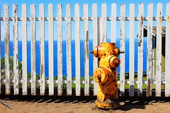 Hydrant (Eduardo Ruiz M.) Tags: color yellow hydrant fence point reyes