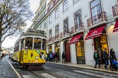 Estrela (m_fernandezh) Tags: road street portugal rain calle carretera lisboa lisbon tram railway vehicle cobbles alfama va tranva empedrado vas vehculo