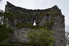 Ruin (CemDur) Tags: tree nature overgrown nikon natur ruin mysterious