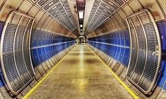Princess Leia woz 'ere  #photography #photooftheday #photo #londonunderground #tubestation #streetphotography #london #underground #lines #vanishingpoint (Andrea Kennard) Tags: square squareformat iphoneography instagramapp uploaded:by=instagram