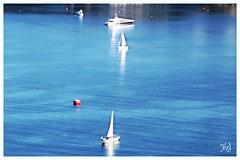 Voiliers en Rade de Villefranche sur mer (Melody Rubeli) Tags: ocean blue sea mer mare sail bleue rade finmars2016