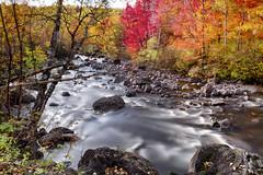 Une brise legere d'automne (gaudreaultnormand) Tags: longexposure autumn canada yellow jaune automne river eau quebec paysage cascade saguenay calme feuillage montsvalin riviere parcsqubec parcnationaldesmontsvalin