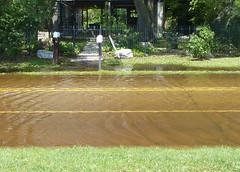 Flooding, Lakeshore Drive, Mandeville Louisiana (Monceau) Tags: street lines lakeshoredrive mandeville flooded