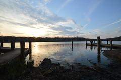 DSC_1279 (Six Sigma Man (Thank you for the 1.8M+ views)) Tags: sunset pond nikon longisland smithtown nikond3200 suffolkcounty blydenburgh blydenburghcountypark blydenburghpark