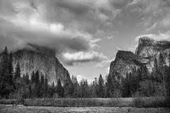 oh dear _SMB2090 (steve bond Photog) Tags: california nationalpark nikon yosemitenationalpark valleyview