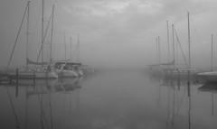 After the rain (Elena Berd) Tags: blackandwhite lake monochrome rain fog clouds marina boats boat harbour foggy sail fingerlakes senecalake watkinsglen