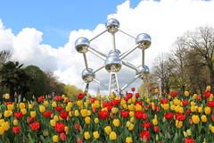 Atomium (frankieleon) Tags: flowers brussels sky spring tulips belgium 1958 atomium worldsfair