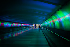 Point A to Point B or C (Jeronimo Photography) Tags: travel blue green lights airport purple metro detroit tunnel dtw 14mm olympusomdem10 detroitterminalwayne