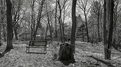 must b Bench Monday (frptlady....) Tags: ny historic fujifilm blacknwhite hbm mtpleasantcemetery frpt kms~photography