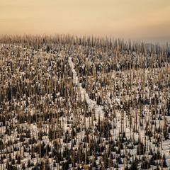 _MAK4847_2016_02_27_1-320 Sek. bei f - 5,6_85 mm_ISO 250 (Markus Kolar braucht kein Photoshop...aber Licht) Tags: schnee nationalpark landschaft wandern bayerischerwald 2016 lusen fotoblosn httpmarkuskolarblogspotde pentaxks2