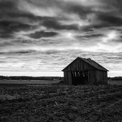 Sderfjrden (mattias.ljunggren) Tags: bw monochrome clouds barn zeiss finland spring lada agricultural vaasa vr vasa ker moln svartvitt sterbotten ostrobothnia sderfjrden sonya7 loxia250