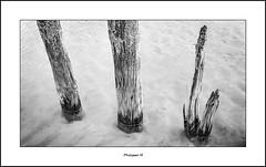 PhM - Deux pieds (2) (Philippe Em) Tags: post cap cape pied breakwater poteaux pasdecalais blancnez briselames
