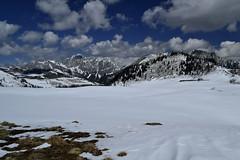 ...a perfect day! (matteo.buriola) Tags: panorama nikon neve alpi sella friuli sauris festons d3100