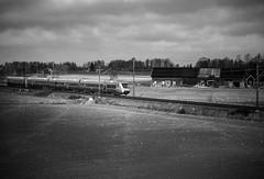 X55, Hallsberg 2014-03-22 (Michael Erhardsson) Tags: mars vinter fotograf sj 3000 trainspotting vr 2014 svartvitt vstra hallsberg x55 tgbild grskala snabbtg stambanan michaelerhardsson