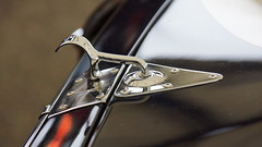 Jaguar E-Type 'Lowdrag' Coup 1963, Graham Hill Trophy, 74th Members' Meeting (4) (f1jherbert) Tags: sony meeting motor alpha circuit goodwood 65 members 74th a65