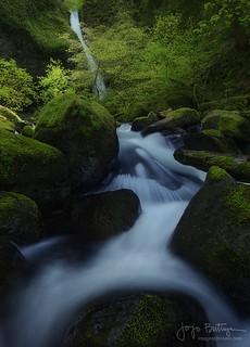 Spontaneous Flow