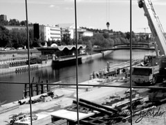 construction work by the river (josefinenylander) Tags: city blackandwhite cats cute nature cat documentary