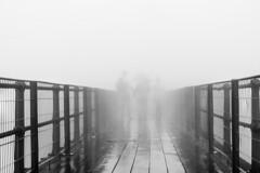 Heading Nowhere (_Moliveira) Tags: street urban blackandwhite bw mist rain misty fog haze rainy