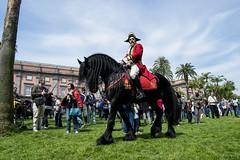 Alla corte del re (seil6fosse9) Tags: blackhorse capodimonte museodicapodimonte capodimontemuseum giardinodeiprincipi realboscodicapodimonte
