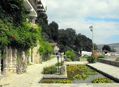 Balchik, Black sea / Bulgaria (Stella VM) Tags: flowers plants garden palace bulgaria blacksea balchik
