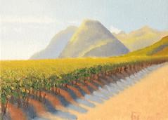vineyards for sale - 120 $ (enzzo_) Tags: art painting landscape fineart fine vineyards oilpainting vadim beldy oilpaintingoncanvas  landscapesdreams flickrunitedaward flickrtravelaward landscapesworld vadimbeldy