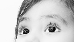 Dreams (Mrigank Gupta) Tags: portrait india white eye monochrome childhood glitter hair eyes child bokeh dreams pupil chipmunks monochromic