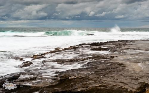 The WIld Blue Sea (4k)