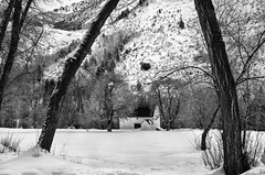 Hobble Creek Barn (JMGiolas) Tags: leica winter rural creek landscape wasatch farm apo provo hobble