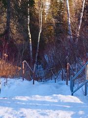 Stairway to Heaven (Camera Bread) Tags: statepark winter minnesota stairs hiking olympus hike stairway northshore upnorth wintertime 45mm omd stairwaytoheaven northernminnesota hikingtrail gooseberryfalls gooseberryfallsstatepark 45mmf18 em5 northernmn hikinginwinter olympus45mmf18 olympusomdem5 omdem5
