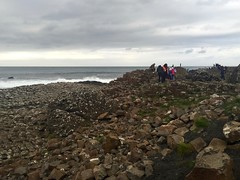 Giant's Causeway (the-sb-archive) Tags: world uk autumn ireland cold heritage nature beauty fun site interesting scenery stunning giants sight northern dull causeway exceptional