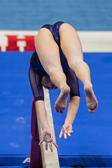 Utah vs Washington-2016-093 (fascination30) Tags: utah washington gymnastics universityofutah utes