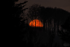 Orange Sun (fs999) Tags: sunset sun paintshop soleil spring sonnenuntergang slim pentax dusk coucher sigma mc paintshoppro vernal 500mm crépuscule sonne printemps equinox k5 density haida frühling corel neutral aficionados pentaxist abenddämmerung artcafe hsm 12ev 80iso équinoxe pentaxian ashotadayorso justpentax 150500 topqualityimage zinzins flickrlovers topqualityimageonly sigma150500 fs999 fschneider pentaxart nd36 nd4000 sigma150500mmf563apodghsm pentaxk5iis k5iis proiis x8ultimate paintshopprox8ultimate haidaslimproiimcnd36