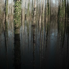 Eau douce (cushmok) Tags: water river square flood charente eaucruepentax