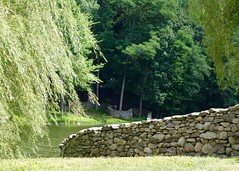 The Wall That Went For A Walk (Anne Marie Clarke) Tags: trees summer green wall maple pond oak stones stormking weepingwillow serpentine environmentalart andygoldsworthy fieldstone mountainvilleny thewallthatwentforawalk