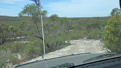 Dorado Downs (trevjclark) Tags: downs south sandy australia semi scrub arid dorado mallee