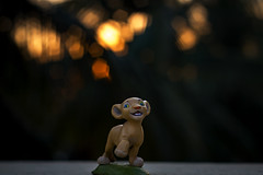 Hakuna Matata (Premnath Thirumalaisamy) Tags: sunset canon toys eos 50mm dof toystory bokeh outdoor outoffocus mcdonalds f18 nala lionking hakunamatata toyphotography ilovebokeh 550d bokehlicious toymeal