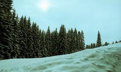 Combloux, lomography, 3 (Patrick.Raymond (2M views)) Tags: france montagne alpes xpro lomography nikon neige savoie haute combloux concordians