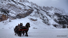 a winter ride... (JA Photography - Be There, Out There) Tags: albertacanada sleighride banffnationalpark lakelouie