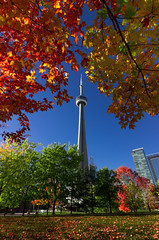 Framed by fall (snowyturner) Tags: park autumn trees toronto tower fall leaves buildings foliage colourful framing roundhouse