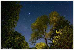 Trees and stars (lichtspuren) Tags: trees sky night stars landscape nacht himmel fisheye nrw 16mm landschaft zenitar bume f28 tecklenburg sterne astrometrydotnet:status=failed astrometrydotnet:id=nova1523623