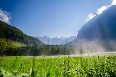 Green (biertraeger) Tags: mountains sterreich berge wandern bregenzerwald amatzing