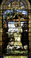 The Good Shepherd (Lawrence OP) Tags: california window glass university sheep chapel stainedglass stanford lamb tiffany jesuschrist goodshepherd stanfordmemorialchurch otherkeywords frederickstymetzlamb