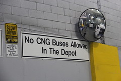 IMG_7075 (GojiMet86) Tags: mta transit museum nyc new york city bus buses grand avenue depot cmf control maintanence facility tour