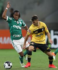 Palmeiras x So Bernardo (18/04/2016) (sepalmeiras) Tags: palmeiras sep arouca sobernardo campeonatopaulista sriea1 allianzparque palmeirasxsobernardo18042016