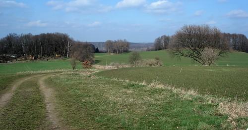 Galgenberg View