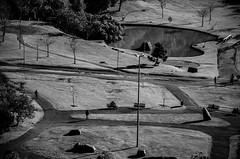 Parque Tanguá_1 (Dani Uribe P.) Tags: brasil curitiba tanguá aereal 2015