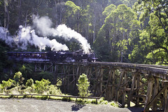 puffing billy (nathancox1999) Tags: bridge train amazing steam billy belgrave puffing